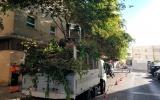 Las demandas de la AVV La Laguna comienzan a ser atendidas por las delegaciones del Ayuntamiento de Cádiz